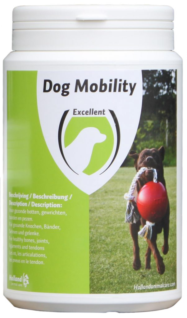 Dog Mobility