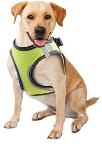 Doggy Safety Harness XS. A:28-30cm B:32-37cm
